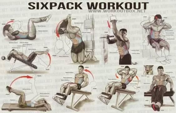 最全的健身动作训练图解,从此撸铁不求人!